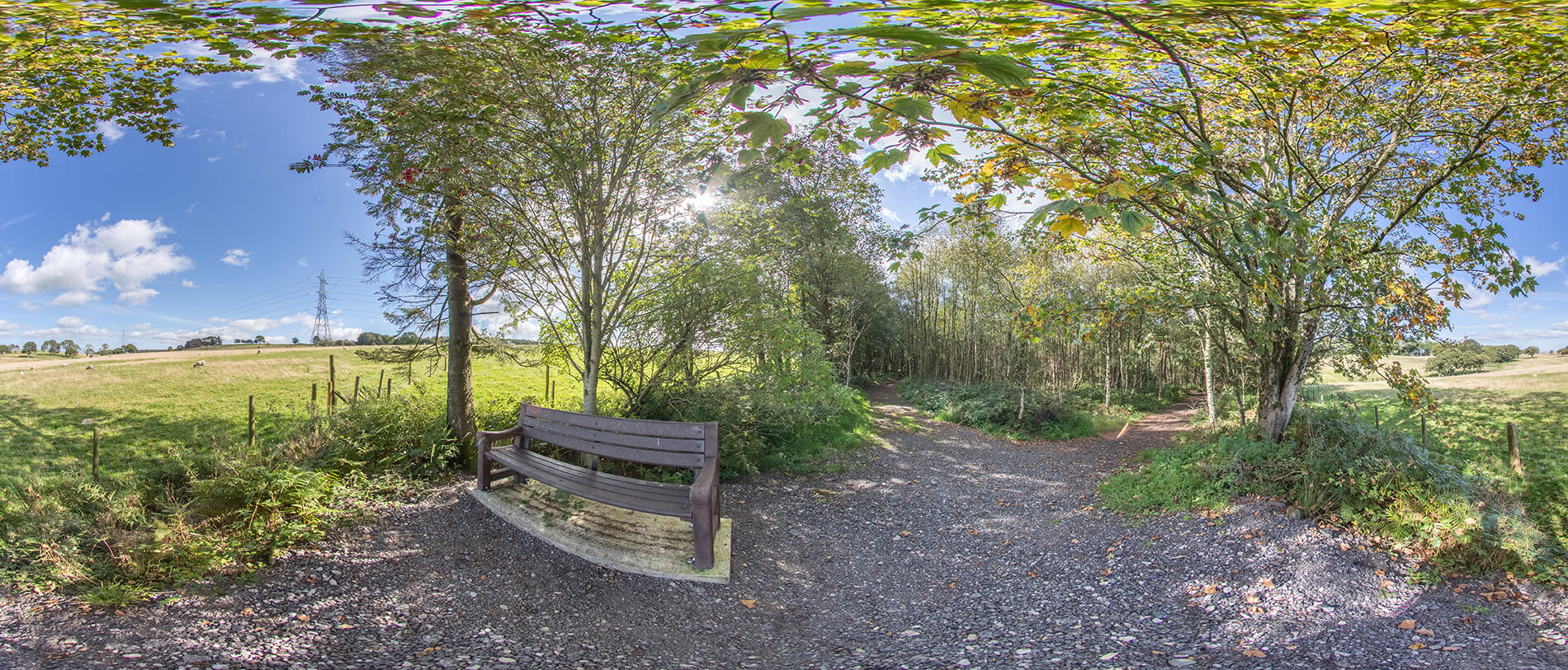 OLD_HALL_BENCH_PANO1[1]