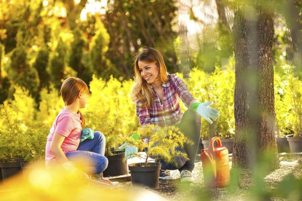 Family planting garden iStock_000043600650_Medium
