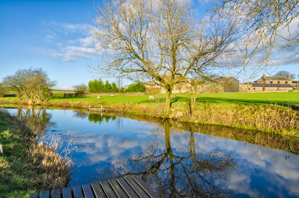 Sunny Winter day with bare trees beside the Lancaster Canal in Cumbria, England with green fields and blue sky.