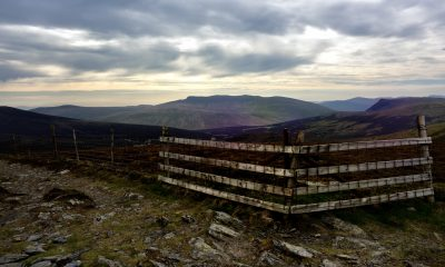The fence line on the summit